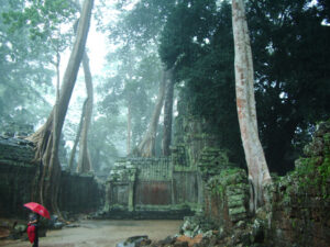 Ta Prohm in the rain